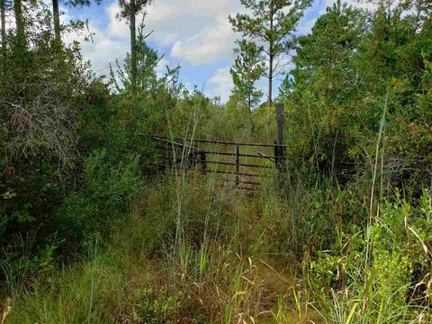 Photo of Vacant Sw Wabasso Ter, Greenville, FL 32331