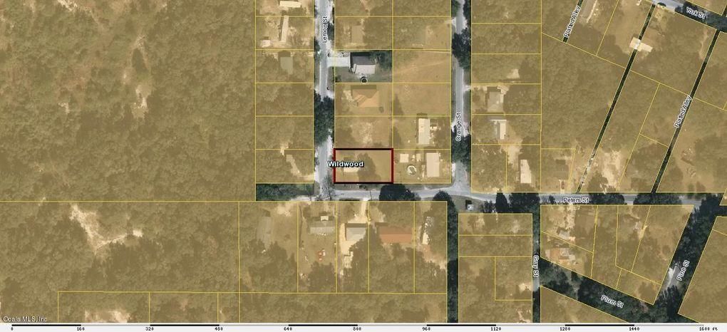 Wildwood Florida Map.805 Peters St Wildwood Fl 34785 Realtor Com