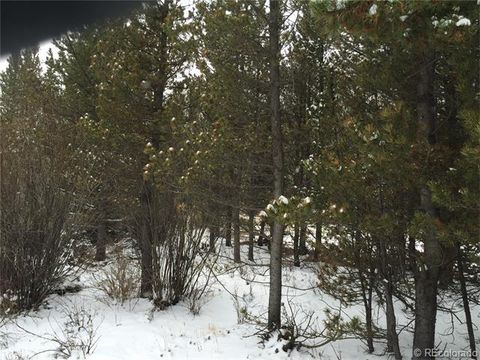 3572 Co Rd # 60, Grant, CO 80448