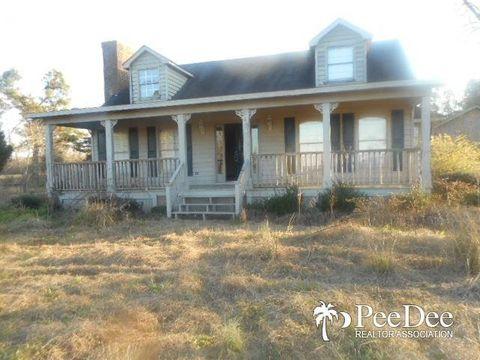 5493 Bluff Rd, Mullins, SC 29574