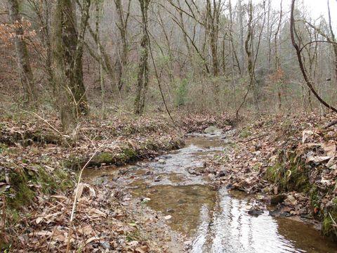 Photo of Spring Creek Rd, Reliance, TN 37369