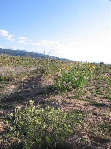 Photo of Laguna Jacquez Ests Lot 4, Youngsville, NM 87064