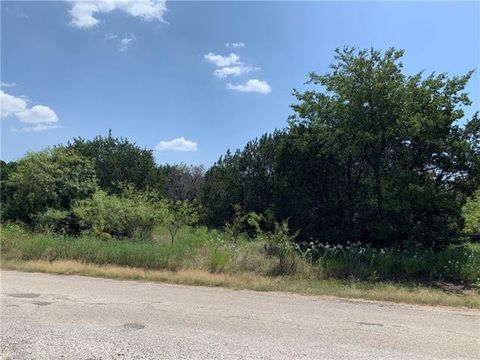 Photo of 43206 Fringewood Dr Lot 206, Whitney, TX 76692