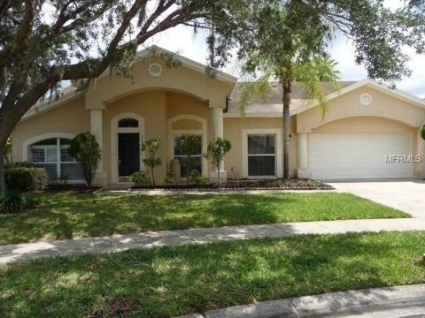 calusa real estate homes for sale in calusa lutz fl