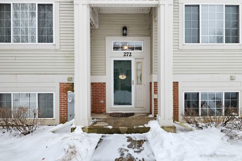 272 New Haven Dr, Cary, IL 60013