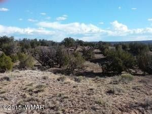 Woodland Valley Rnch Lot 881, Saint Johns, AZ 85936
