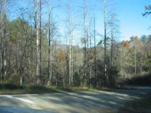 Photo of 301 Mine Hollow Rd, Reliance, TN 37369