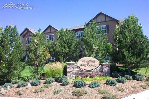 10822 Creede Creek Pt, Colorado Springs, CO 80908