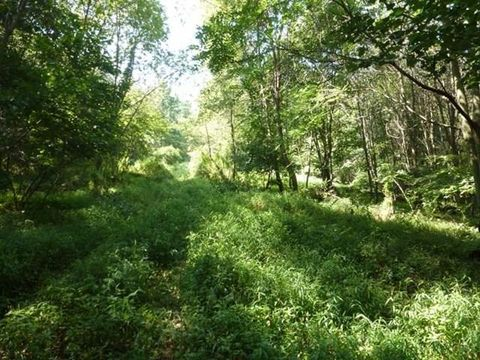 Swales Rd Lot 2, McAlisterville, PA 17049