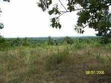 11 Moore Rd, Pineville, MO 64856