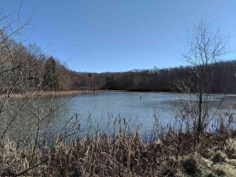 3073 Seese Rd, Bruceton Mills, WV 26525