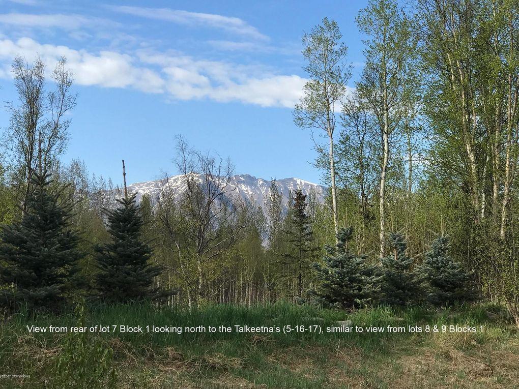 9115 E Alpine View Dr, Palmer, AK 99645