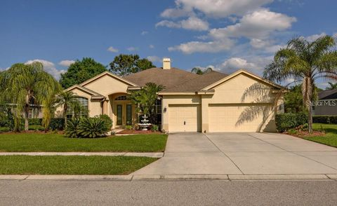 Photo of 18933 Saint Laurent Dr, Lutz, FL 33558