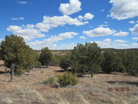 Photo of 2198 Pulp Mill Rd, Clay Springs, AZ 85923