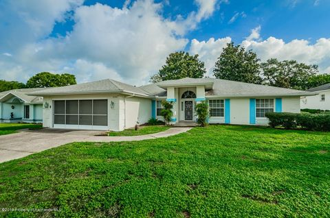 Horizon North Spring Hill Fl Real Estate Homes For Sale