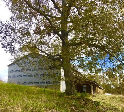 Photo of 1235 Turner Rd, Williamstown, KY 41097