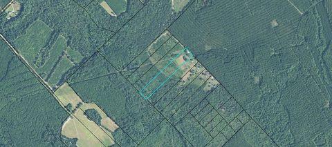 Photo of 168 Mc Lean Rd, Lumber City, GA 31549