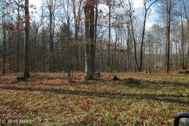gerrardstown mature singles Gerrardstown, wv very attractive corner lot 711 acres front cup-de-sac mature trees paved roads lead to neighborhood of single family homes in cressen run.