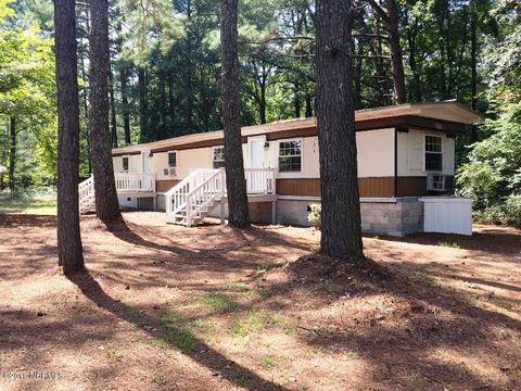 772 Hallsville Rd, Beulaville, NC 28518