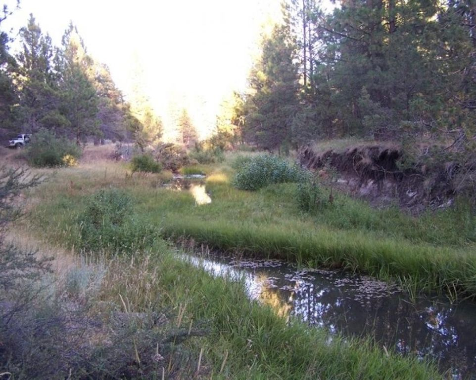 Goose Lake Causeway Rd, Davis Creek, CA 96108