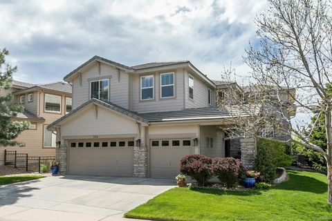 Homes For Sale Near Northridge Elementary School Highlands Ranch