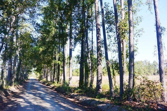 Cypress Campground Rd Ridgeville Sc 29472 Home For