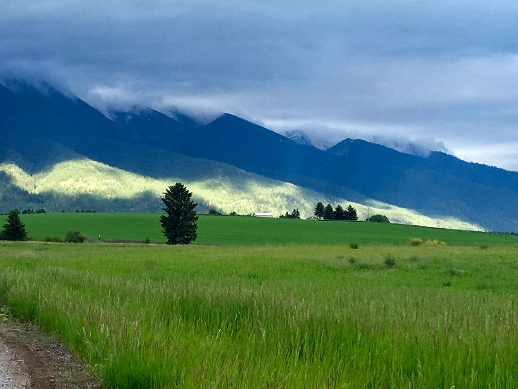 154 Fairview Ln, Kalispell, MT 59901 - Recently Sold Land & Sold