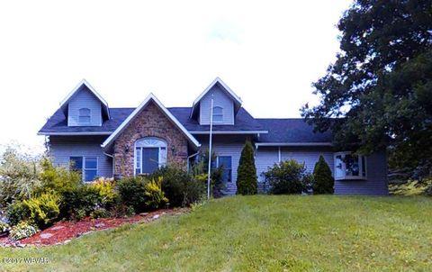 4384 Pine Run Rd Linden PA 17744