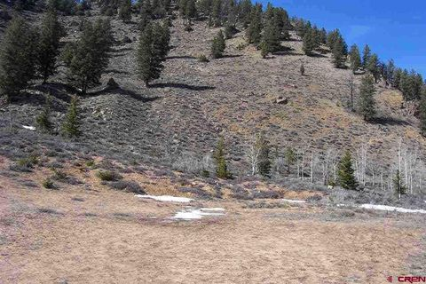 421 Spring Creek Rd, Almont, CO 81210