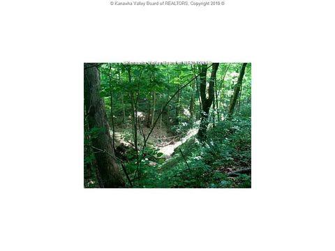 Wolf Pit Frk, Sod, WV 25564