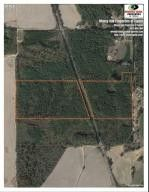 Photo of County Road 1151, Plantersville, MS 38862