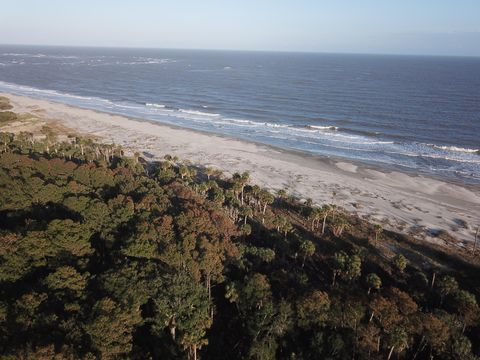 Photo of Lots 28 Lots 28 & 29 And 29 Pelican Flight Dr, Dewees Island, SC 29451