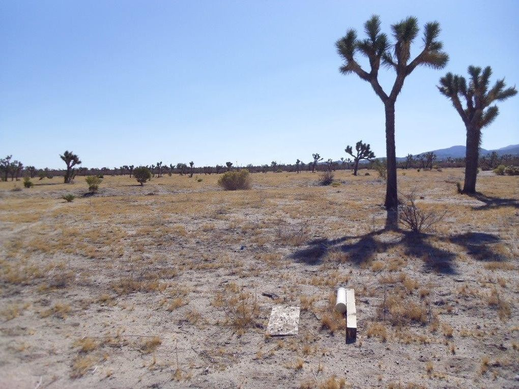 Ponderosa rd pinon hills ca 92372 land for sale and real estate