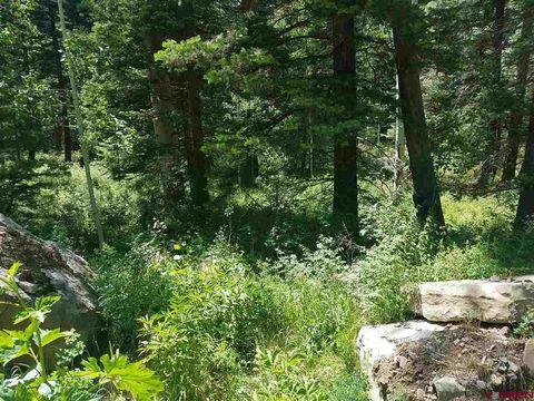 Grizzly Ln, Durango, CO 81301