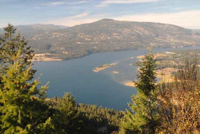Kettle Falls Washington ~ Mingo mountain rd kettle falls wa land for
