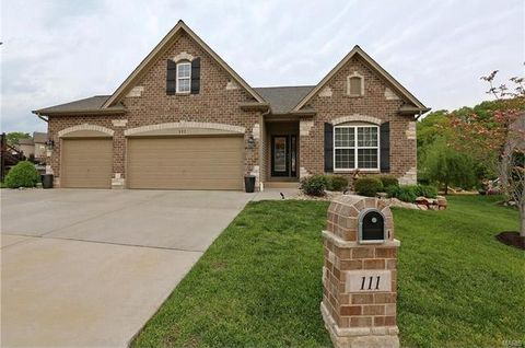 111 Double Tree Ct, Imperial, MO 63052