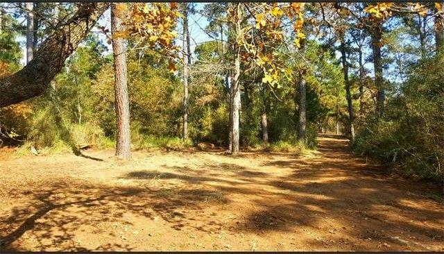 527 Pine Valley Loop, Smithville, TX 78957 - realtor.com®