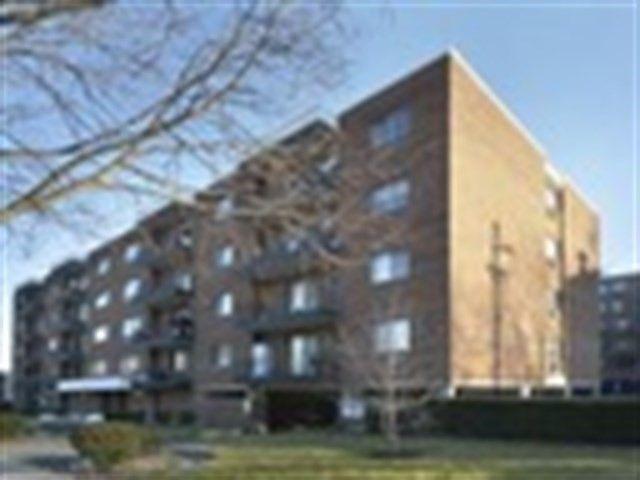 205 W Miner St Apt 204 Arlington Heights, IL 60005