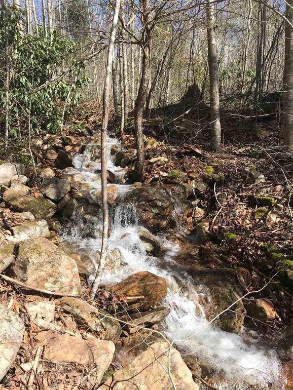 Lindsay Gap Rd, Cosby, TN 37722