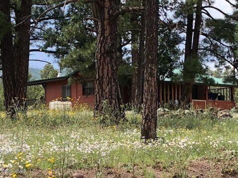 Photo of 235 County Road 2104, Alpine, AZ 85920