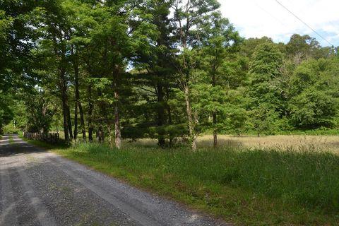 Azalea Hills Ln, Little Switzerland, NC 28749