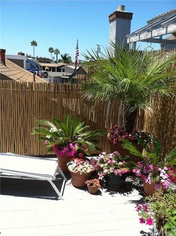 216 Collins Ave, Newport Beach, CA 92662