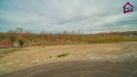 005 A Spring Canyon Rd, Hatch, NM 87937