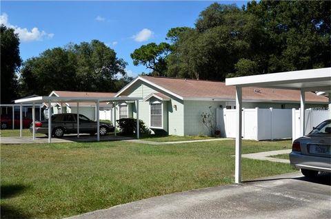 1411 E 1st Ave, Mount Dora, FL 32757