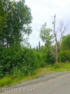 4050 Virgo Ave, Anchorage, AK 99516