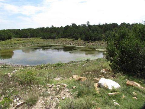 Mills Canyon Rd, Wagon Mound, NM 87752