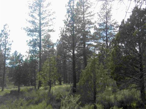 Photo of 12 Klamath Forest Dr, Sprague River, OR 97632