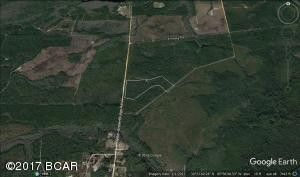 13328 Otter Creek Bridge Rd, Ebro, FL 32437