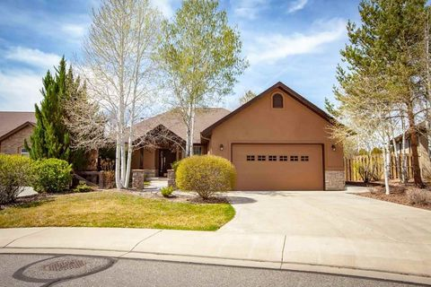 Knolls Grand Junction Co Real Estate Homes For Sale Realtor Com