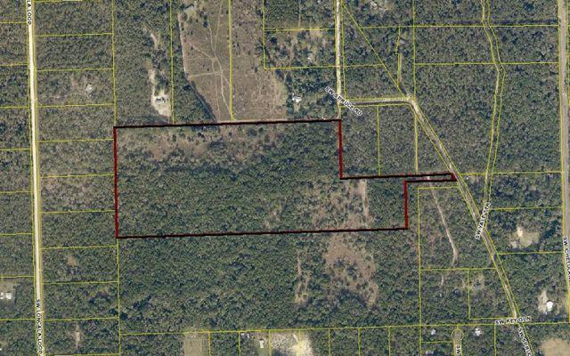 sw spruce rd fort white fl 32038 land for sale and real estate listing. Black Bedroom Furniture Sets. Home Design Ideas